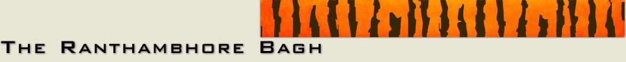 Ranthambore Bagh